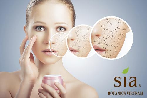 Cách dưỡng ẩm cho da khô mịn màng vào mùa đông.